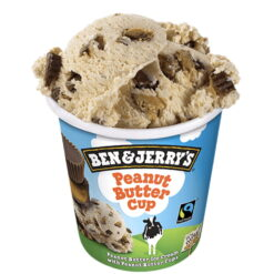 Ben & Jerry's Peanut Butter Cup